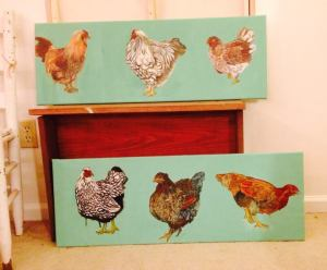 Chicken studies