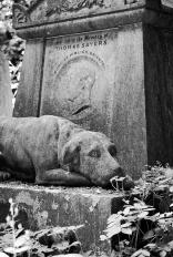 Grave_Animal2