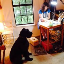 studiodog1
