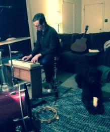 studiodog2