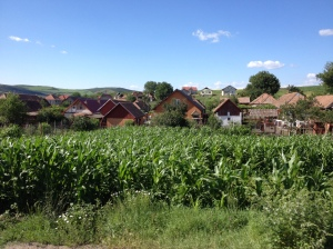 6. Romanian Corn Field