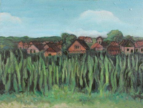 13-romanian-cornfield-final-small